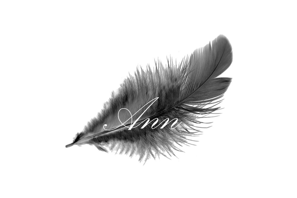ANN-logo