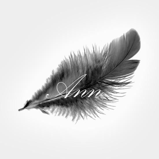 Logo design – Ann