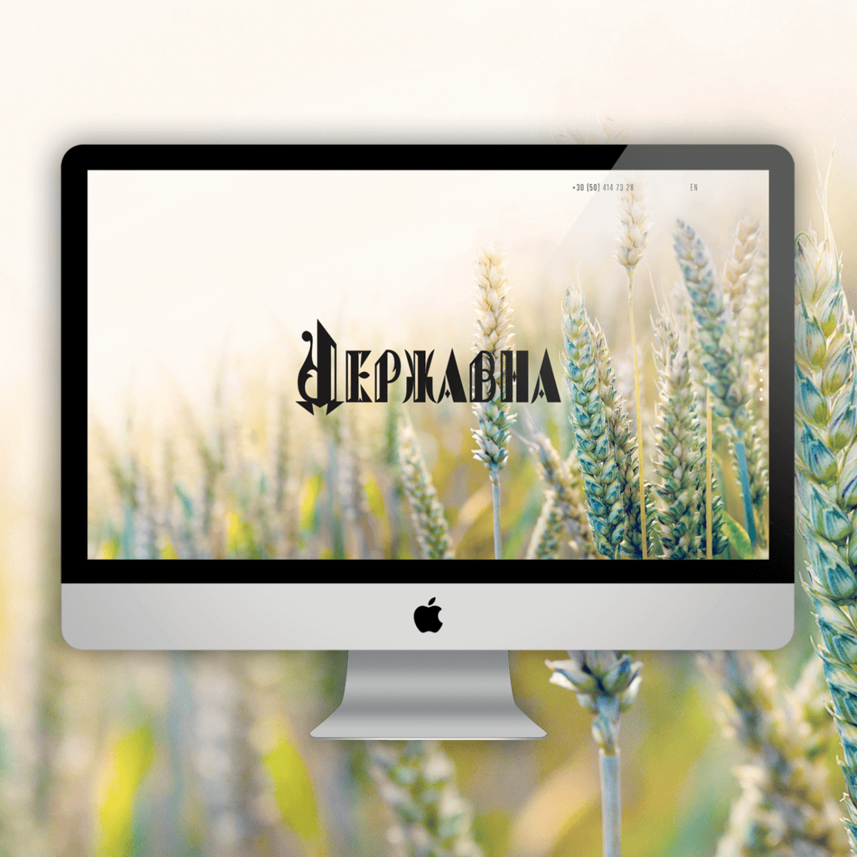 Website design Vodka State