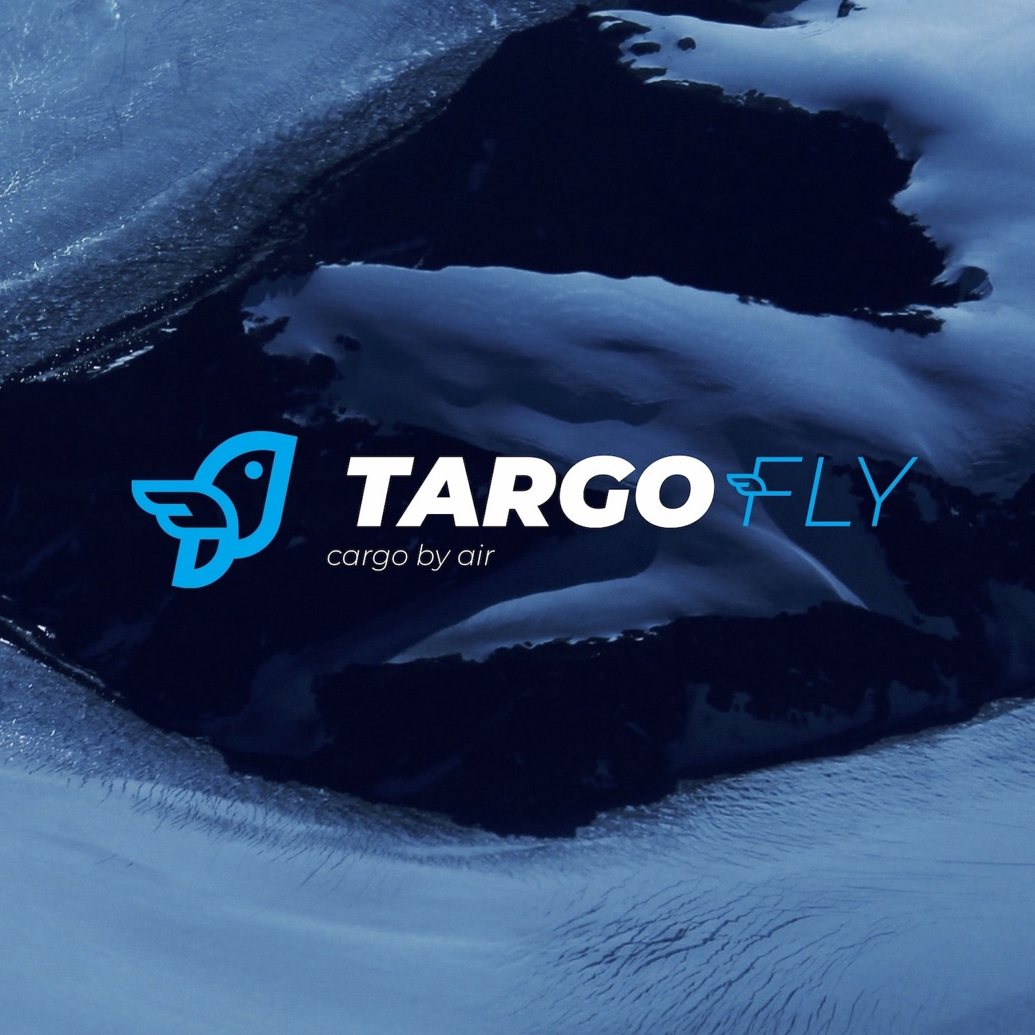 Development LOGO Targo Fly