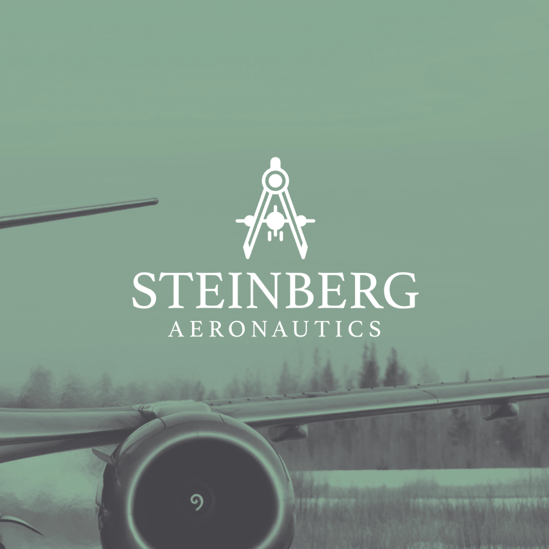 STEINBERG AERONAUTICS logo design