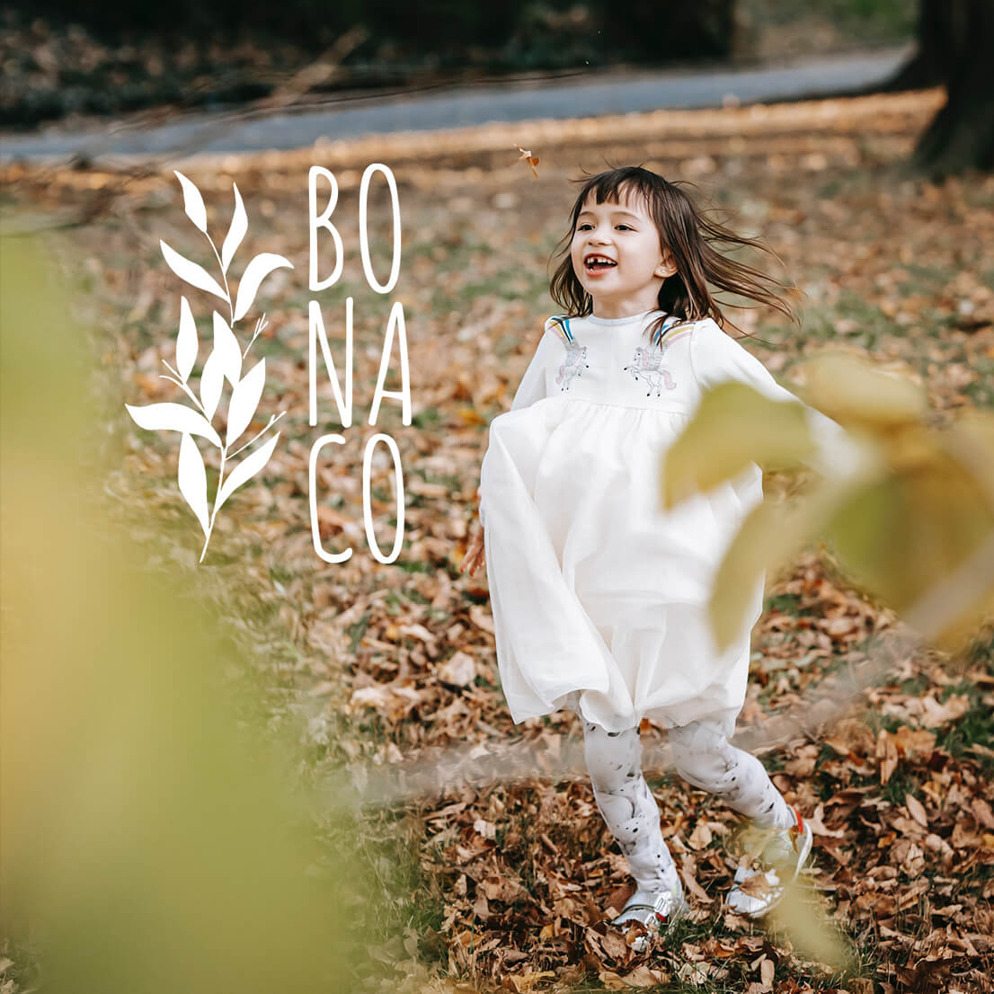 Creating the BONACO logo